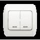 Выключатель двойной с подсветкой EL-BI ZIRVE